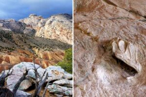 Best place to see dinosaur fossils in the US: Vernal