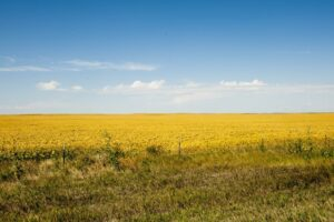 Morgan County: Where the Prairie Meets the Sky