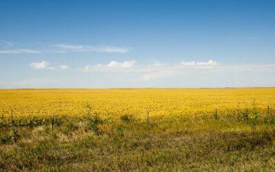 Morgan County: Donde la pradera se encuentra con el cielo