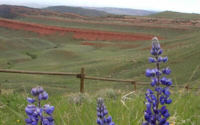 Que faire lors d'un séjour de 3 Jours à Wind River Country dans le Wyoming ?