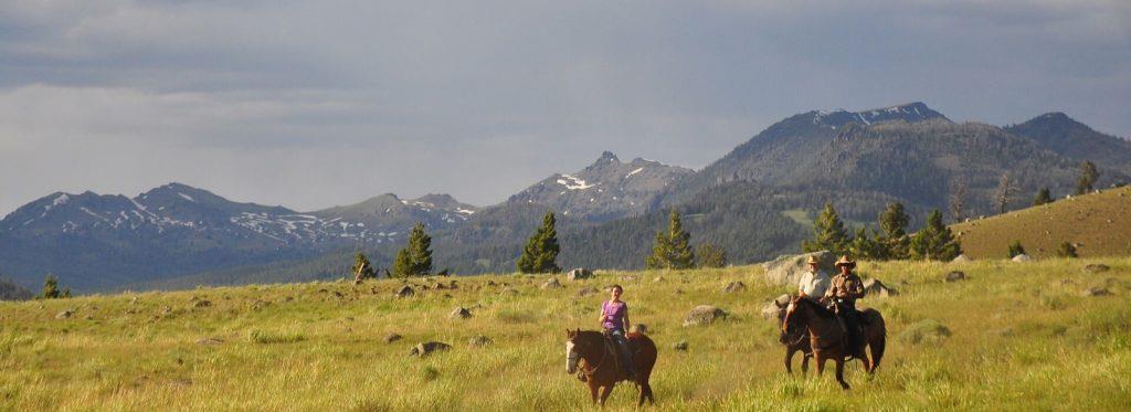 flying-pig-horseback-riding-gardiner-montana-yellowstone