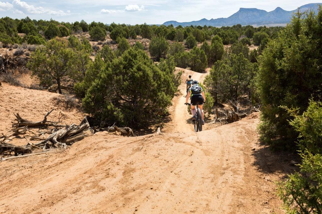 mesa-verde-phils-world-mountain-bike