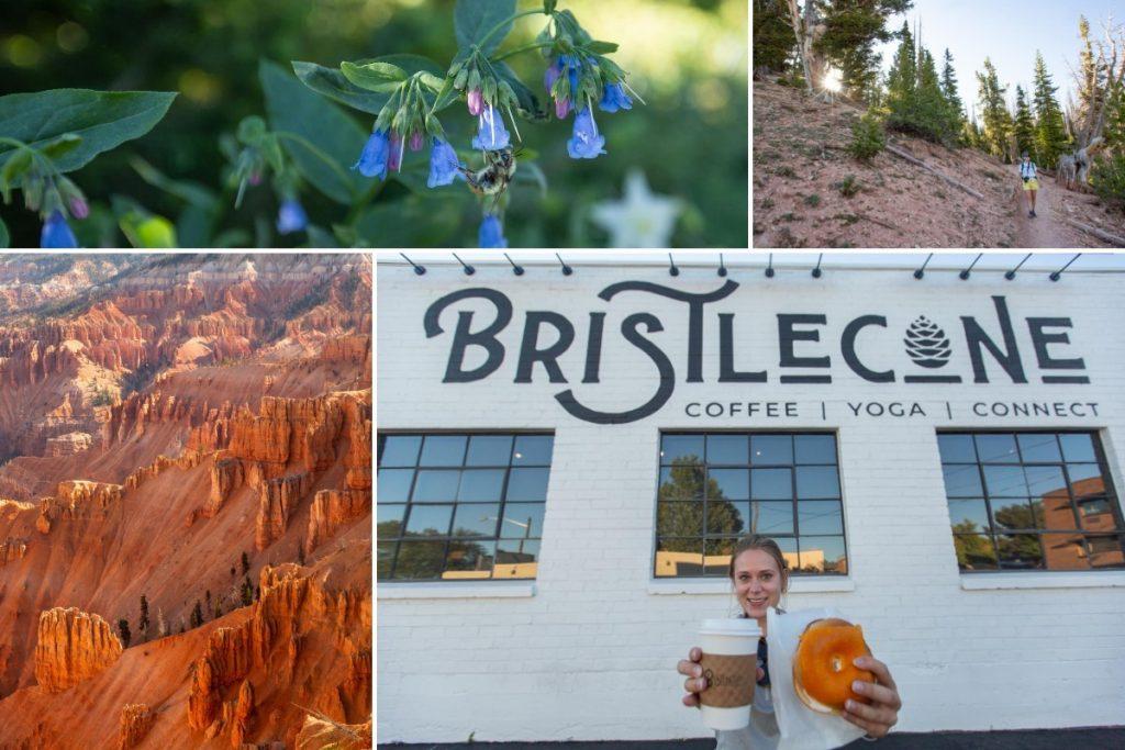 Utah hiking and flowers on mighty five road trip