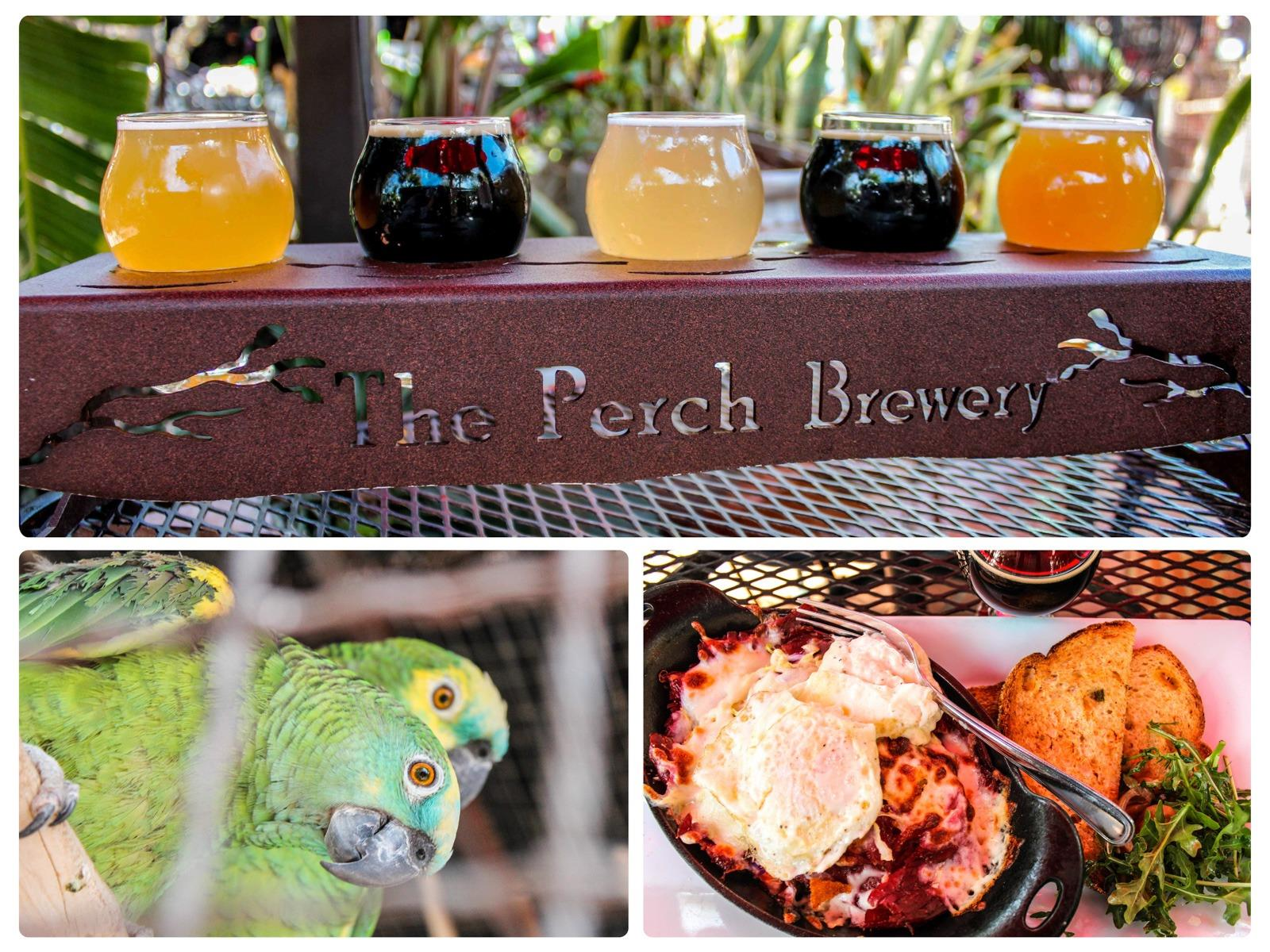 Chandler - The Perch Brewery
