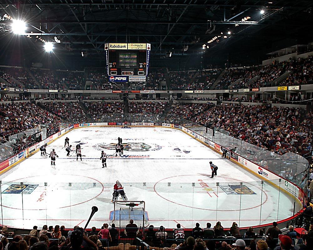 Condors playing hockey
