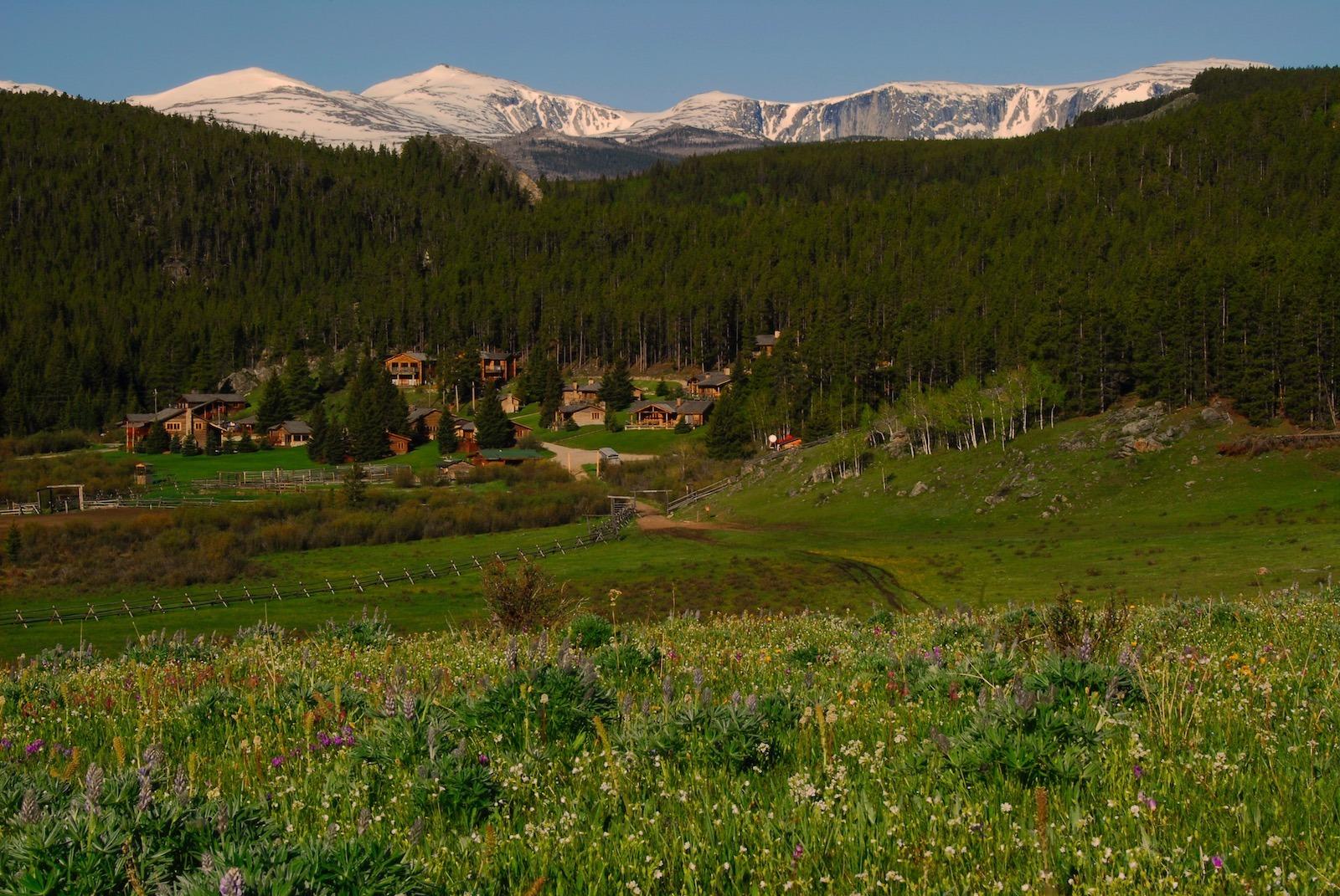 Views of Paradise, Wyoming