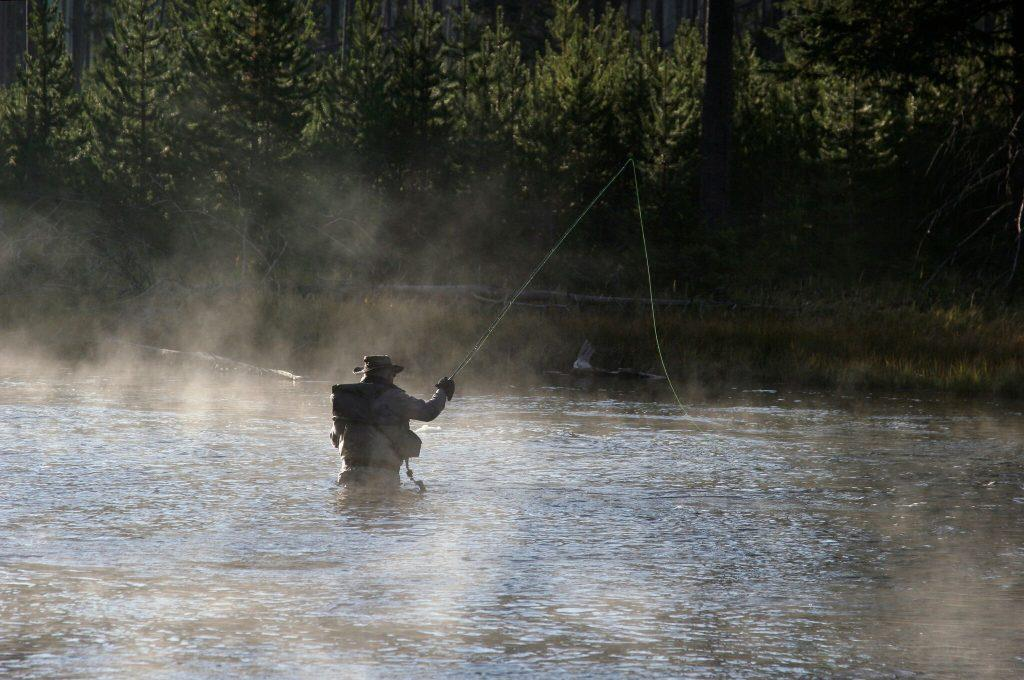 fly fishing, fishing, river, wyoming, Yellowstone