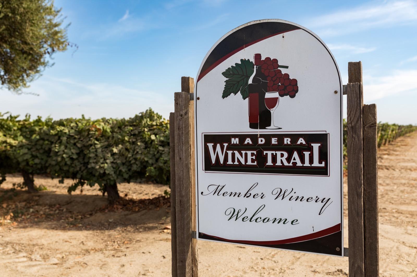 california-high-sierra-madera-ficklin-vineyard-6