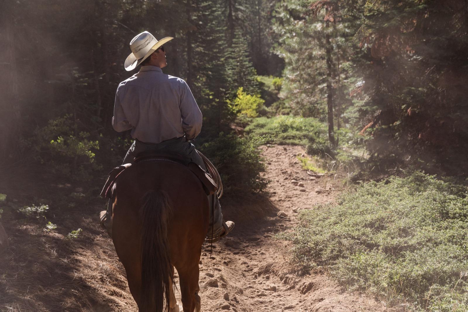 california-high-sierra-tuolumne-aspen-meadow-pack-station-horseback-riding-3