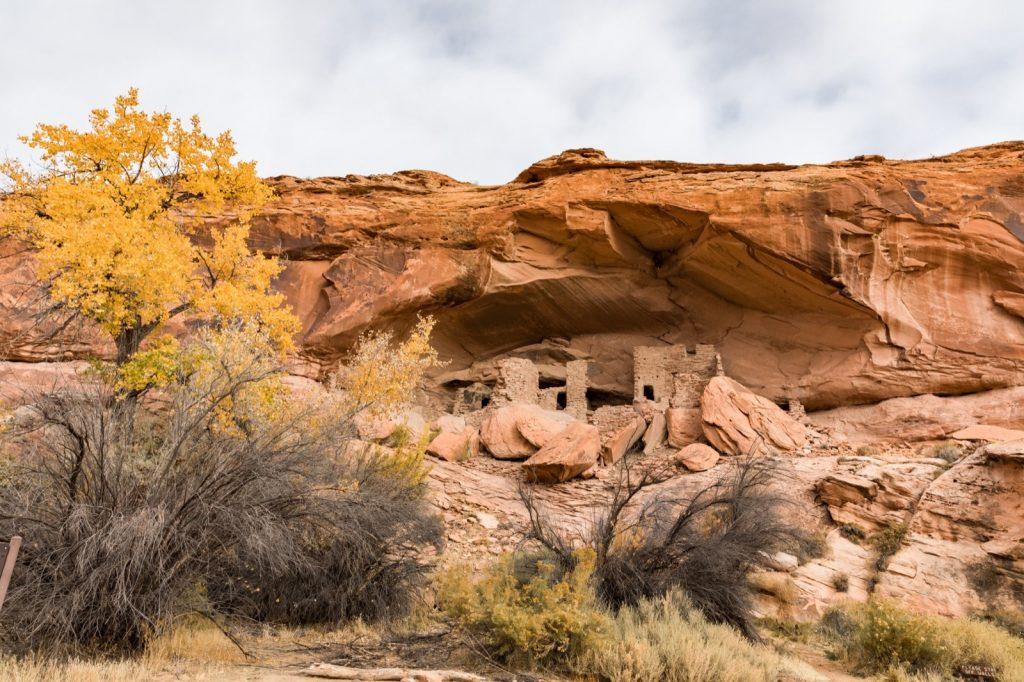 emily-sierra-2019-utah-san-juan-county-bluff-wild-expeditions-river-house-ruin-5