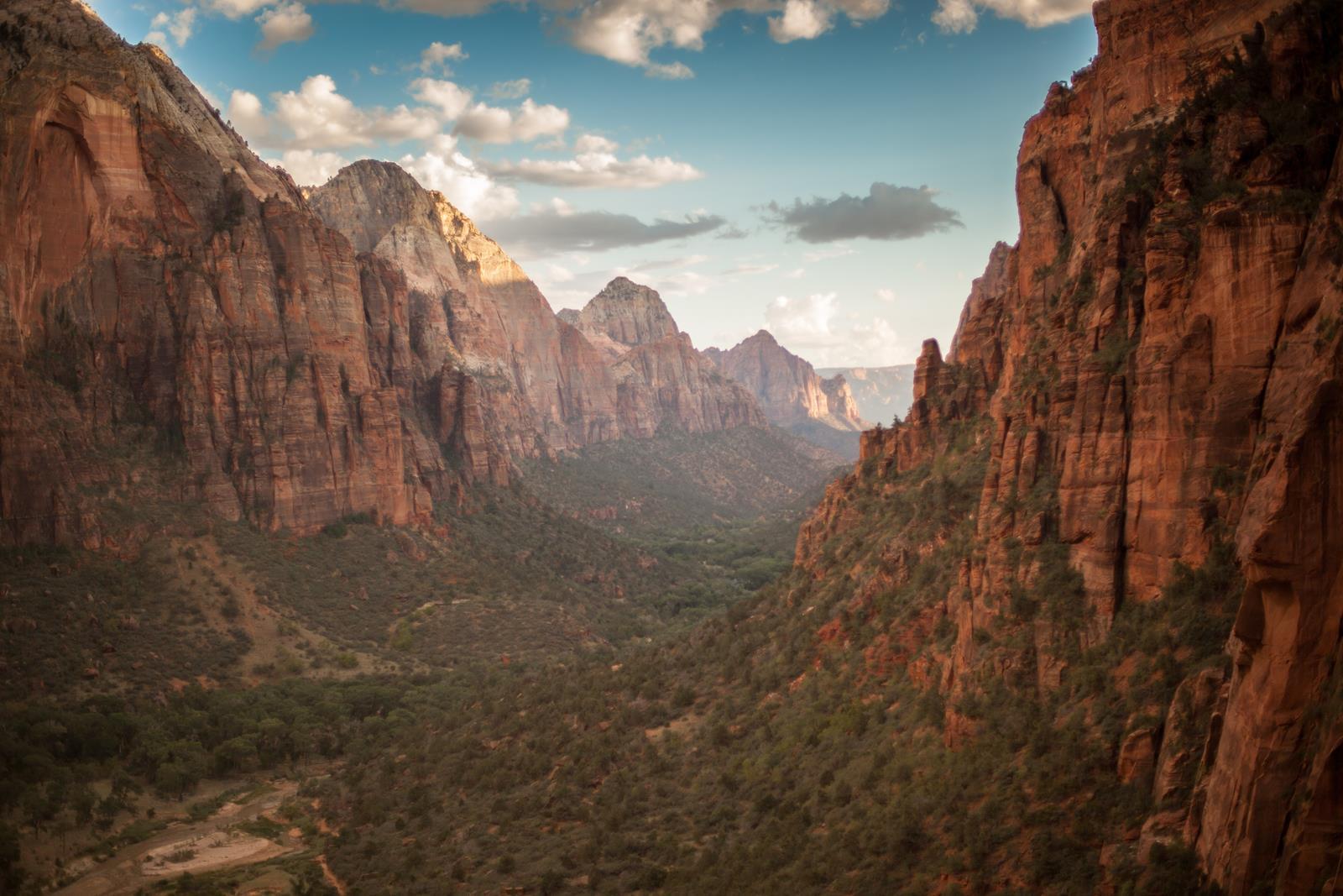Zion national park climbing cliffs