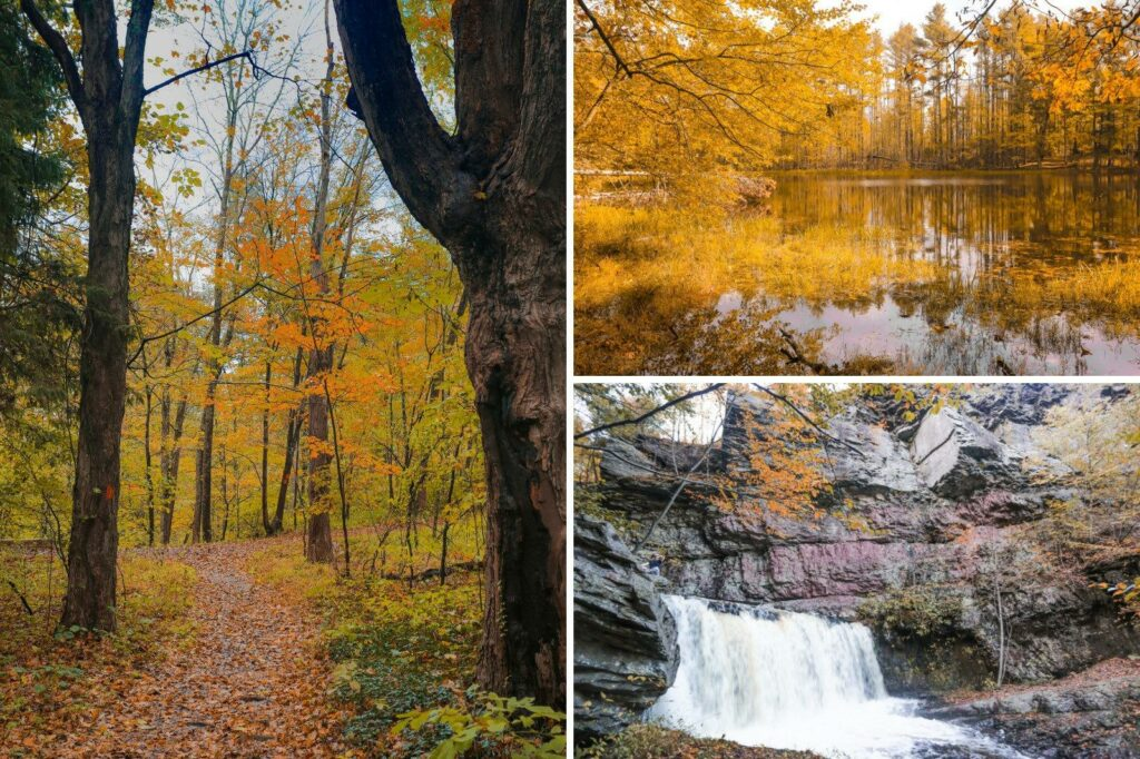The Pocono Mountains - fall leaves and pond