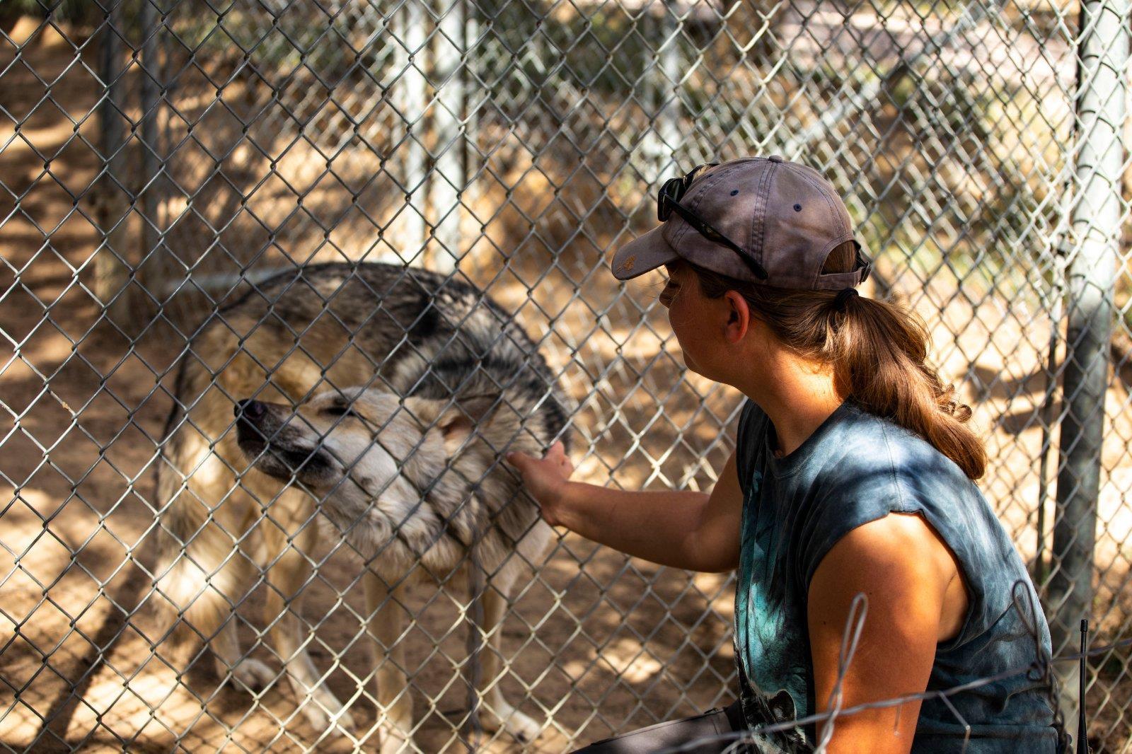Grants, New Mexico - wolf sanctuary
