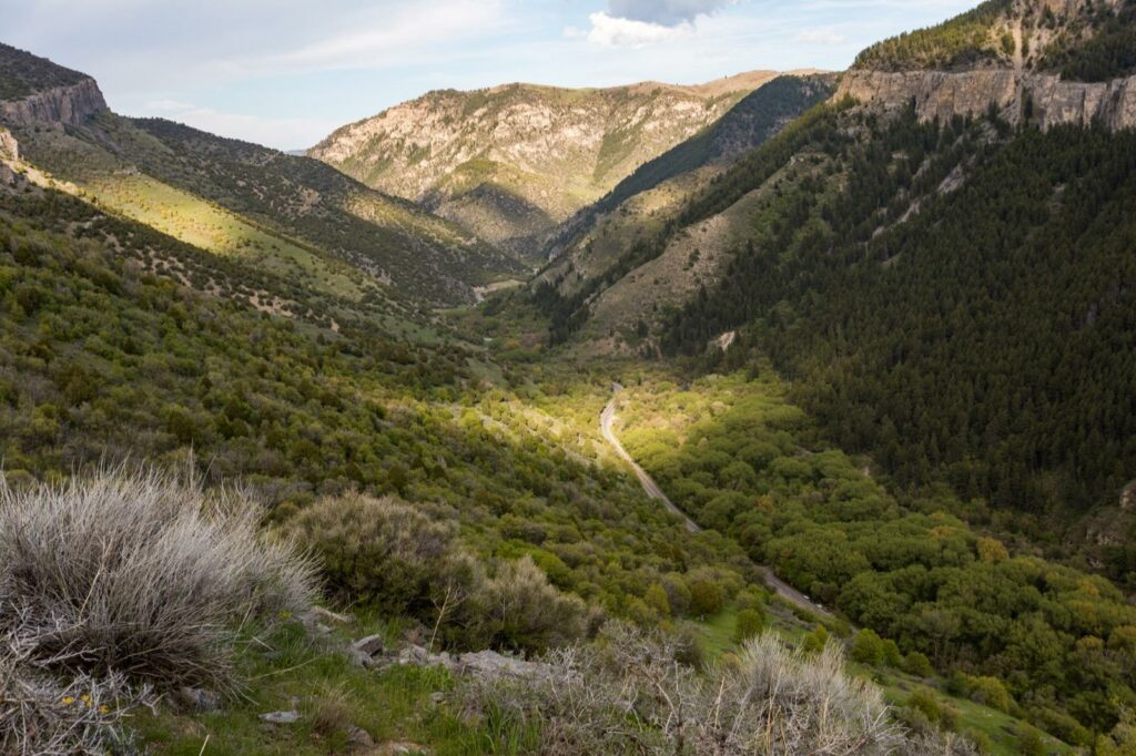 Logan Canyon Scenic Byway - Cache Valley, Utah
