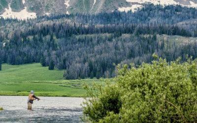Top 5 Dinge, die man in Wyomings Wind River Country erleben kann
