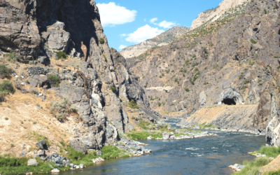 Our (Very!) Successful Fly-Fishing Trip to Thermopolis, Wyoming
