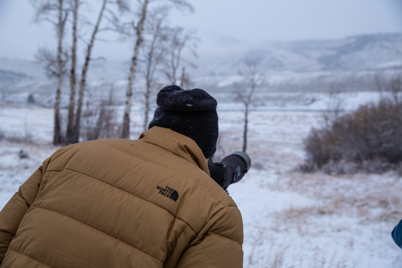 man looking through a scope in Yellowstone on a wildlife tour