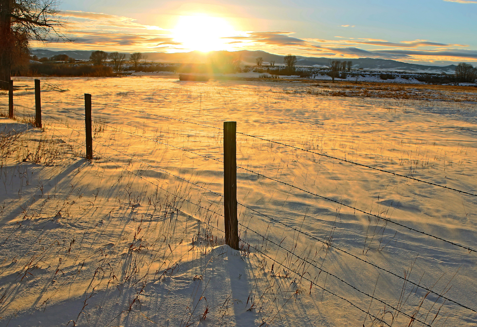 snow and a barbed wire fence at sunset during winter in Carbon County, Wyoming