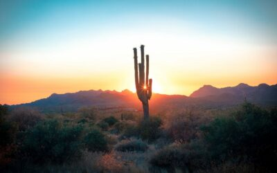 Why Work or Study from Home When You Could be in Southern Arizona?