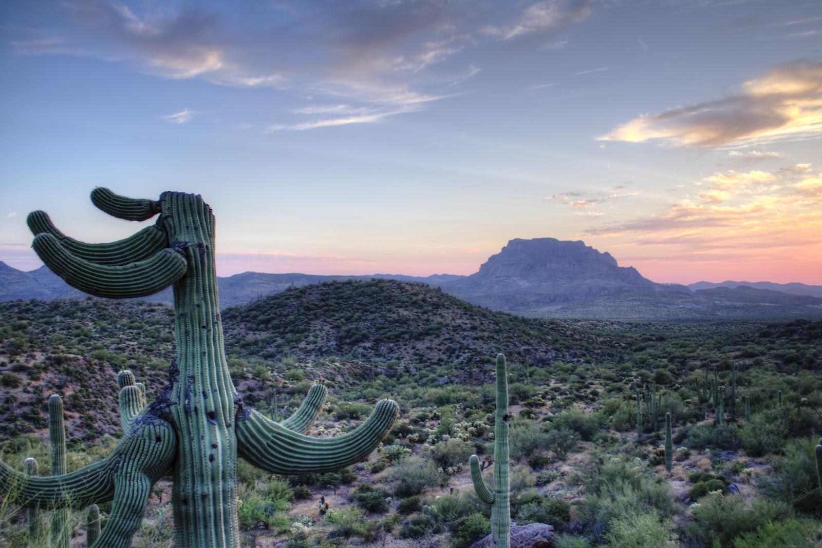 Sunset with mountain and saguaro cactus in Superior, Arizona
