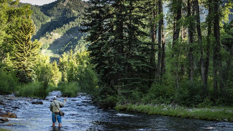 Aspen, Colorado - Fly Fishing Roaring Fork River
