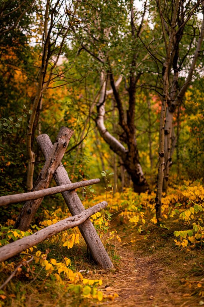 Pocatello, Idaho - Trails in the fall