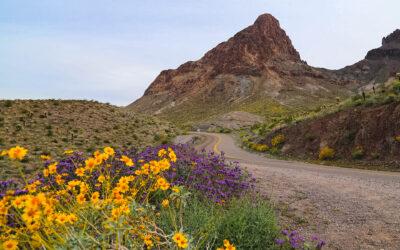 Ciclismo de montaña, superfloraciones y más en Kingman, Arizona