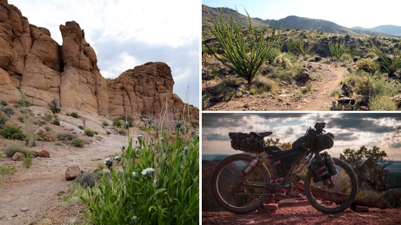 Mountain Bike Trails in Kingman, AZ