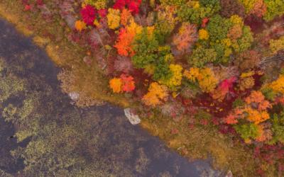 Fall Leaf-Peeping Road Trip: East Coast Style