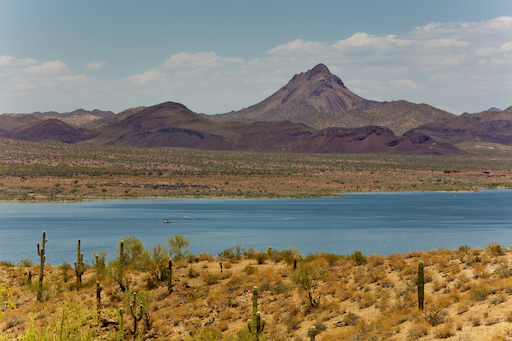 Alamo Lake State Park, Arizona