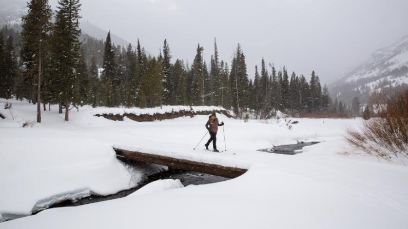 xc skiing cody winter