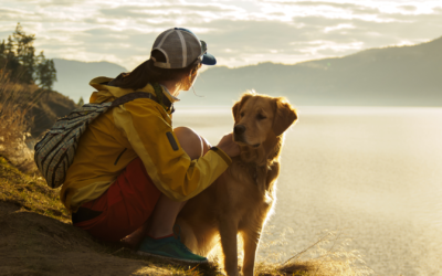 The Best Pet-Friendly Hikes Across America