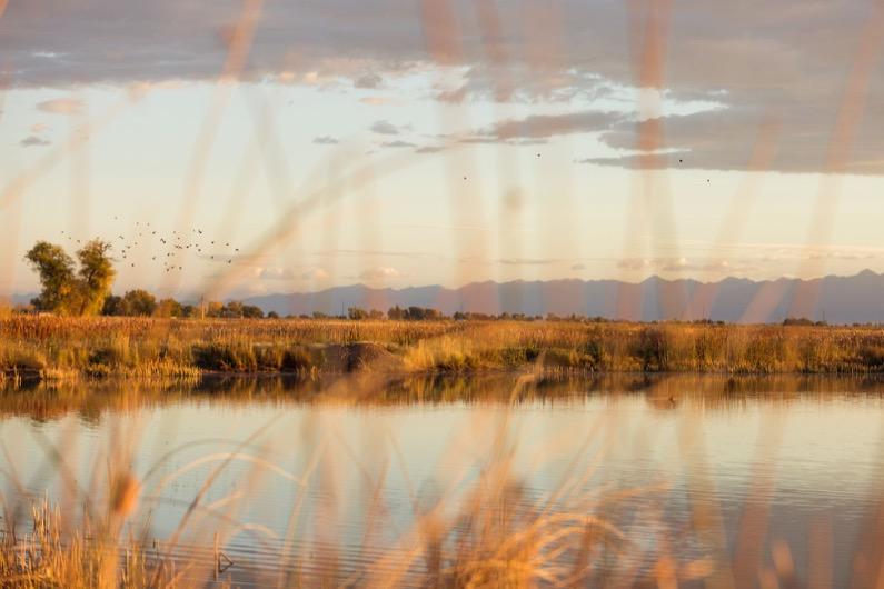 emily-sierra-alamosa-wildlife-refuge-sunrise (6)