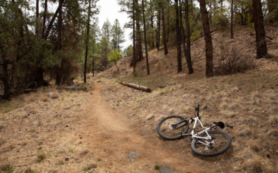 Why Prescott is a Must on Your Next Arizona Trip