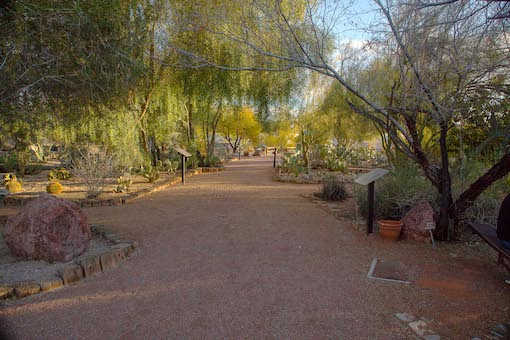 Accessible trail with trees and displays at Lake Havasu State Park