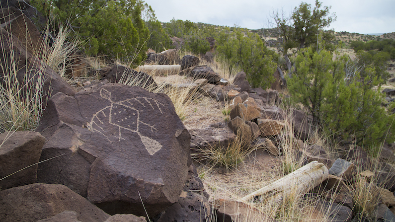 Lyman Lake State Park Ultimate Petroglyph Site