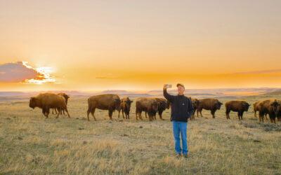 Zweieinhalb unvergessliche Tage in Gillette, Wyoming