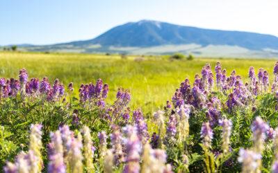 Hidden Corners of Carbon County, Wyoming