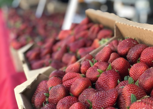 Strawberries at fruit stand